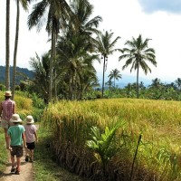 Road trip Bali 17