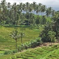 Road trip Bali 38